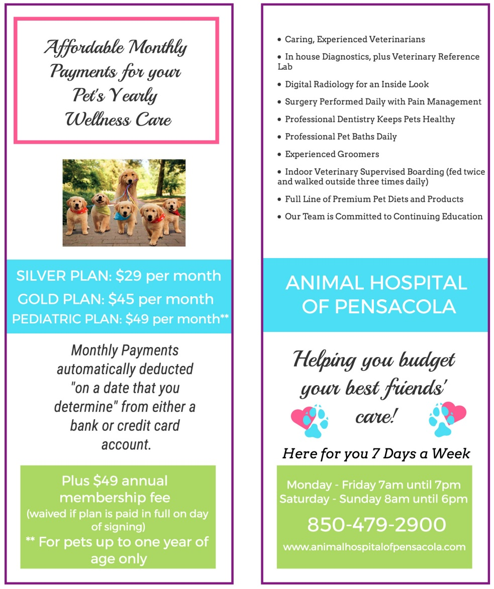 Wellness Plan Brochure