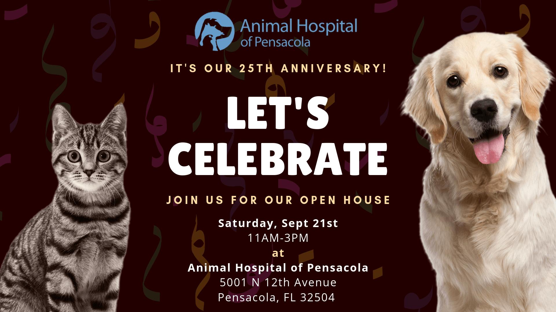 Animal Hospital of Pensacola - Veterinarian in Avenue